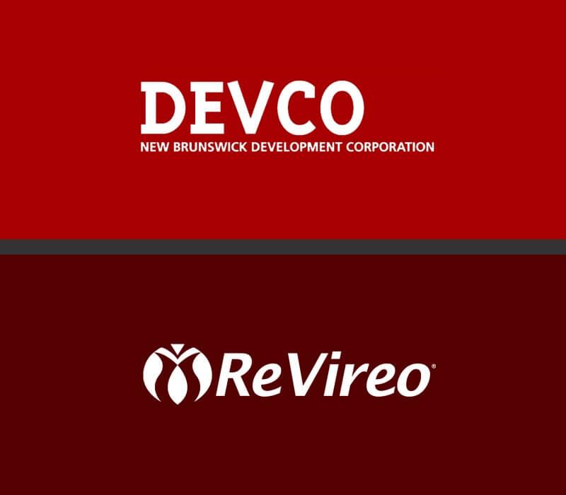 ruleed responsive website revireo